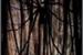 Fanfic / Fanfiction Damirae - a lenda do Slender Man