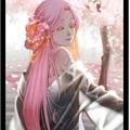 Usuário: CerejeiraSaki