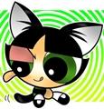 Usuário: Sleepy_cat101