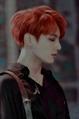 Usuário: TaeGi---