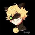 Usuário: _Meow-