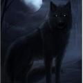 Usuário: Blair_wolf