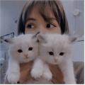 Usuário: Clara_Aspoline