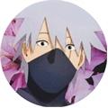 Usuário: susanne_hatake