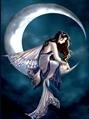 Usuário: Dreamy_Moon