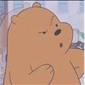 Usuário: urso_pardo