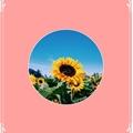 Usuário: GasparSunflower