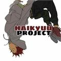 Usuário: HaikyuuProject