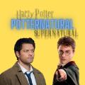 Usuário: Potternatural