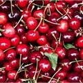 Usuário: Cherry2207
