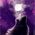 Usuário: NightShadow29LMSR