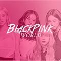 Usuário: BlackpinkWorld_