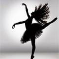 Usuário: balletislife