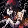 Usuário: My_spider_life