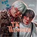 Usuário: TKWonder