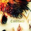 Usuário: Coldibelli