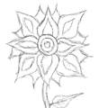 Usuário: ~Flor-De-Seda
