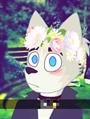 Usuário: ~FurryPuffy