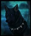 Usuário: ~Lady_Wolf