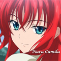 Usuário: Nara-Camila