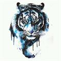 Usuário: Tigernational_