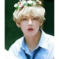 Usuário: Taehyung_Dana