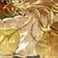 Perfil Z-kun