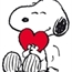Perfil SnoopyS2