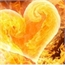 Perfil mylovefire