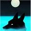 Perfil Shadow-Wolf