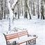 Perfil Snowland