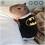 Perfil Giant__Hamster