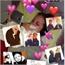 Perfil guilherme_yagami