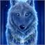 Perfil lobas_da_noite