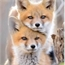 Perfil kitsune_31