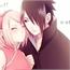 Perfil Haru_sama-