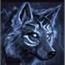 Perfil nightmarewolf66