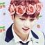 Perfil Panda_kook