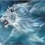 Perfil alicewolf12