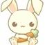 Perfil bunnykawayy
