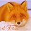 Perfil Red_Fox_BR