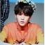 Perfil Min_Lee93