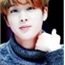 Perfil dn_Seokjin