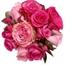Perfil FlowersFanfics