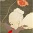 Perfil FuyukiYumiko