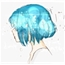 Perfil LittleBlueK