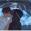 Perfil tia_Parkmin