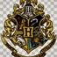Perfil Hogwartsgrif
