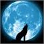 Perfil Space_moon14