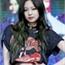 Perfil Kim-Minny